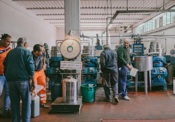 olivenölmühle_JuliaSangNguyen-1