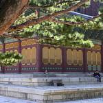 22 Corea del Sur, Deoksugung Palace   12