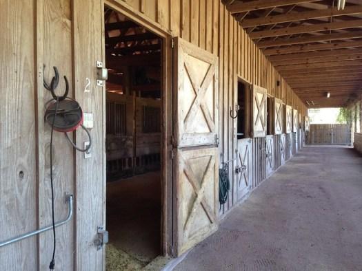 Deborah Stone Farm