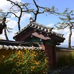 02 Corea del Sur, Gyeongju ciudad 0002