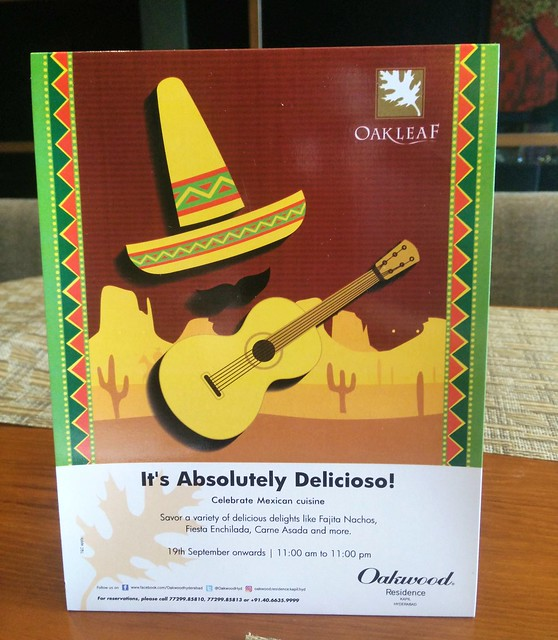 Mexican Food Festival - Oakleaf (1)