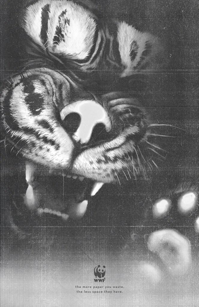 WWF - Tiger