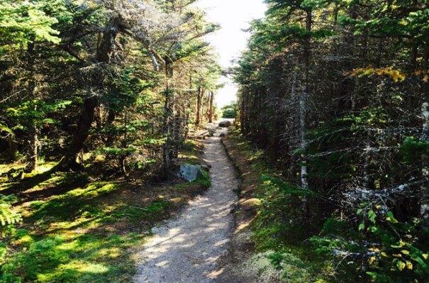 Osceola Summit Approach