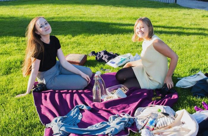 picknick1