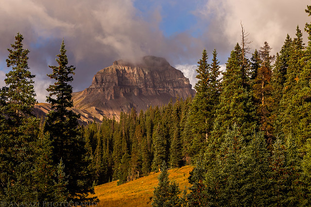 Uncompahgre From Camp