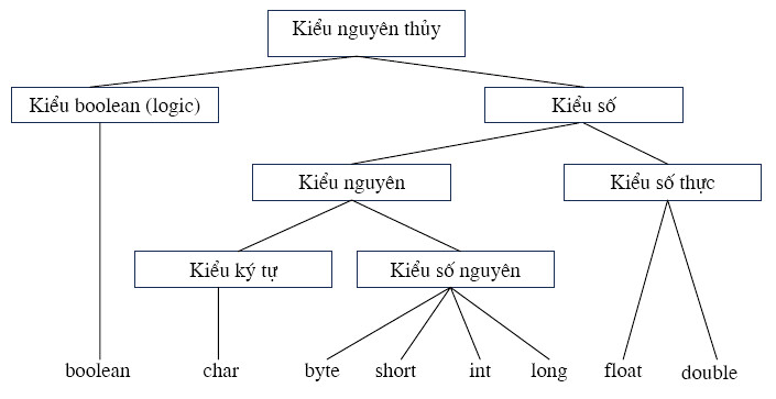 Các kiểu dữ liệu nguyên thủy trong java
