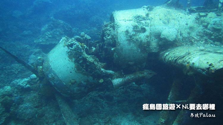 29帛琉戰機正面
