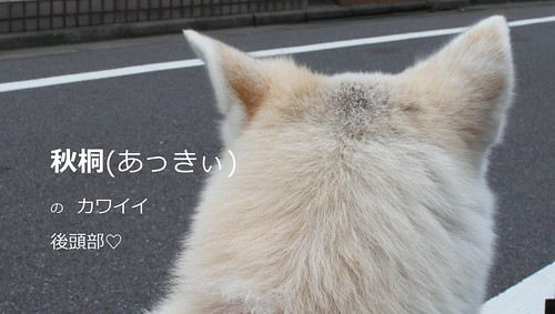 2015_09_27_0056
