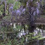 02 Viajefilos en Australia, Kakadu NP 050
