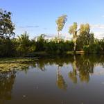 02 Viajefilos en Australia, Kakadu NP 078