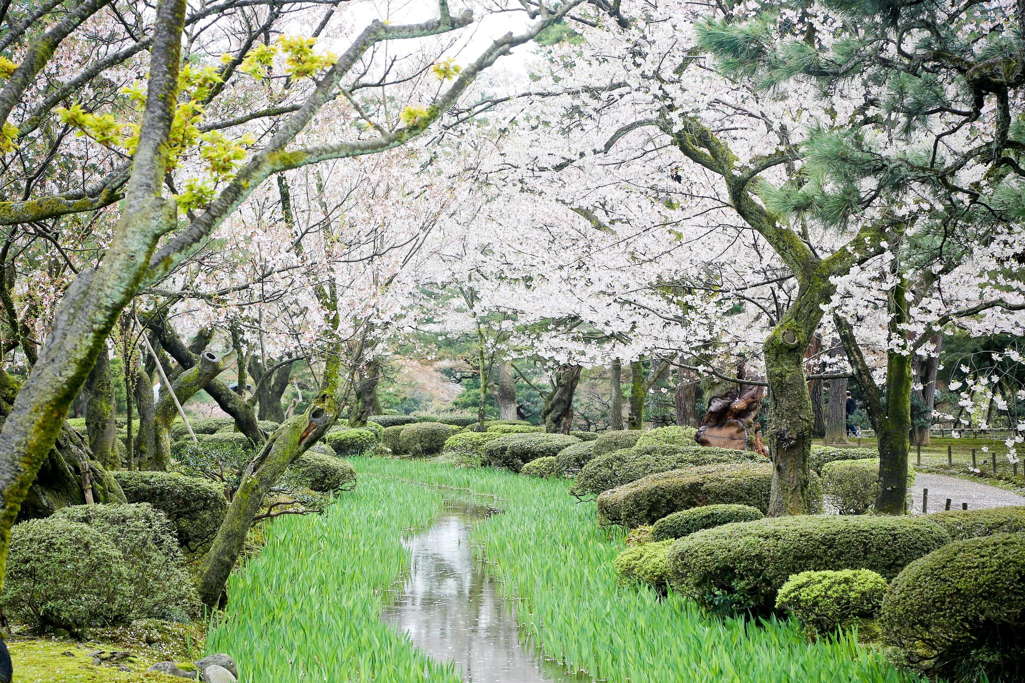 〈金沢紀行〉三日本三大名園之一:兼六園 | FLiPER - 生活藝文誌