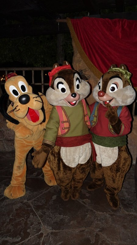 Pluto with Chip n Dale Pirates at Disneyland Halloween Party