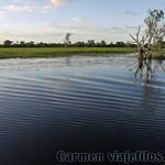 02 Viajefilos en Australia, Kakadu NP 063