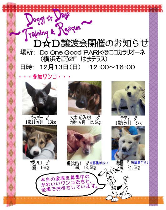 20151213_satooyakai_dd