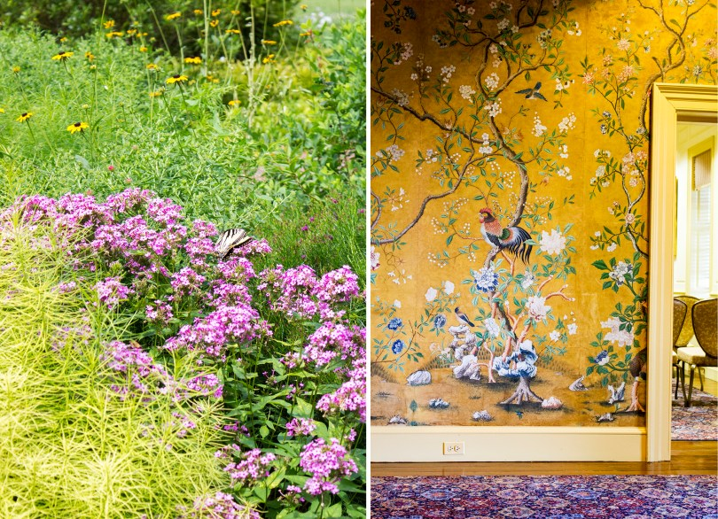 mt-cuba-gardens-butterfly-wallpaper