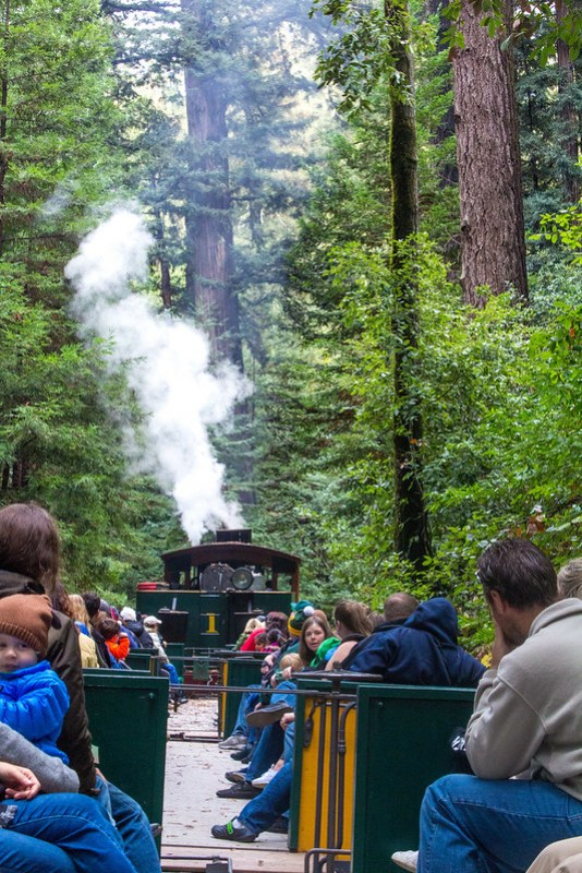 12.05. Roaring Camp Railroad and train ride