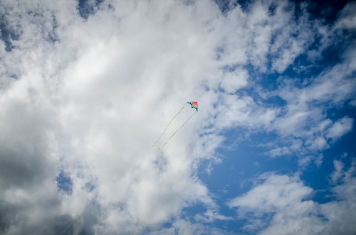 Kite Flying at Avalon Beach-001