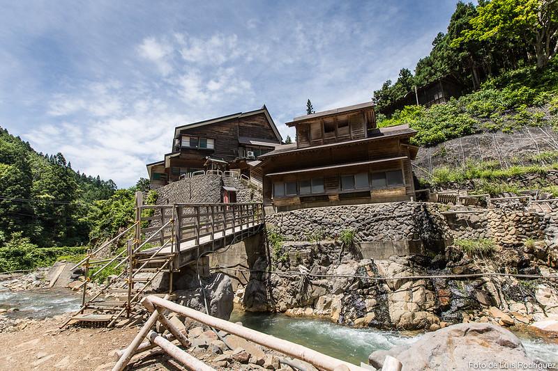 Excursión a Jigokudani-134