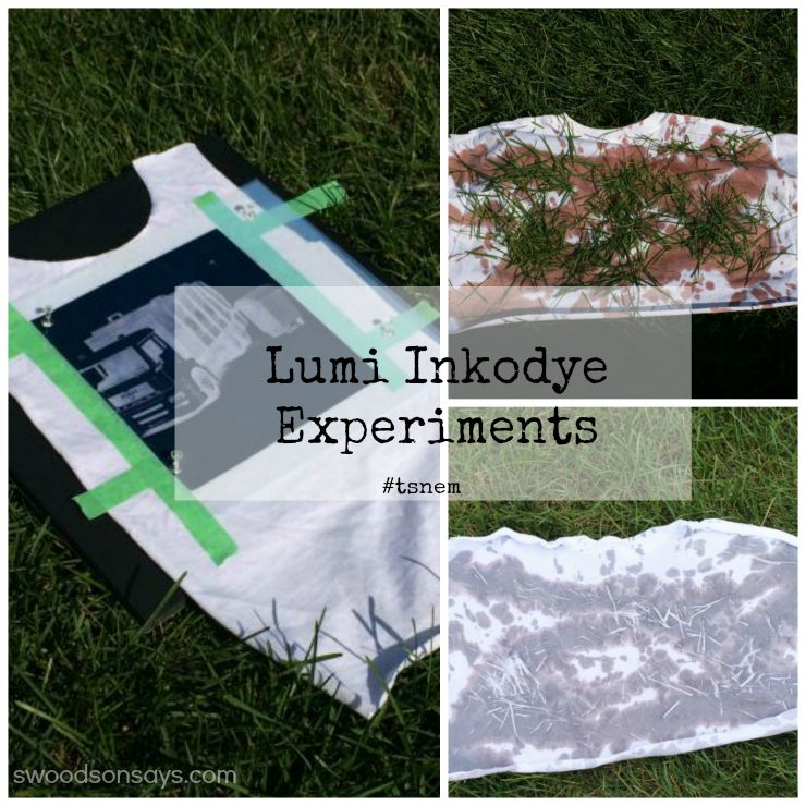 Lumi Inkodye Experiments - Swoodsonsays.com Try Something New Every Month! #tsnem