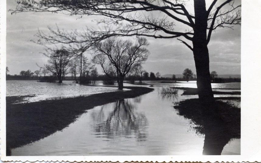Postcards079