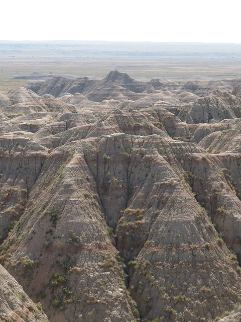 tufts of green on Badlands hills