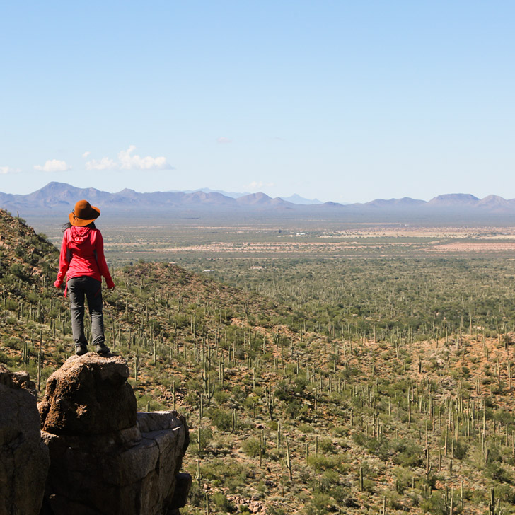 Valley View Overlook Trail (11 Beautiful Things to Do in Saguaro National Park)/
