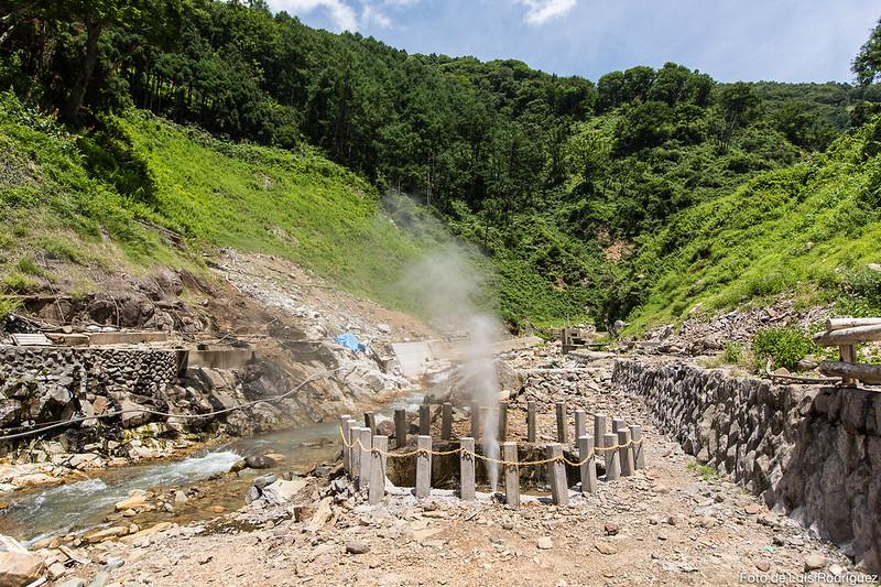 Excursión a Jigokudani-133