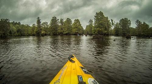 Sparkleberry Swamp with LCU-202