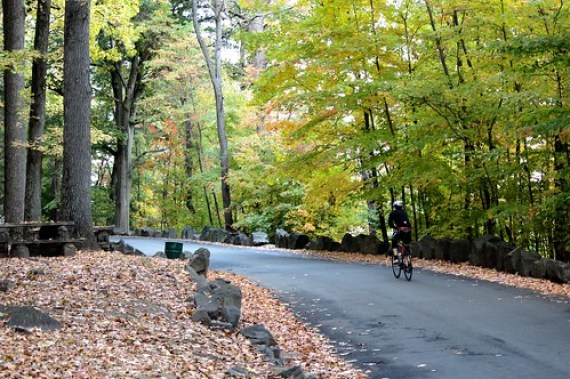 Palisades Interstate Park Commission: Englewood Boat Basin & Picnic Area