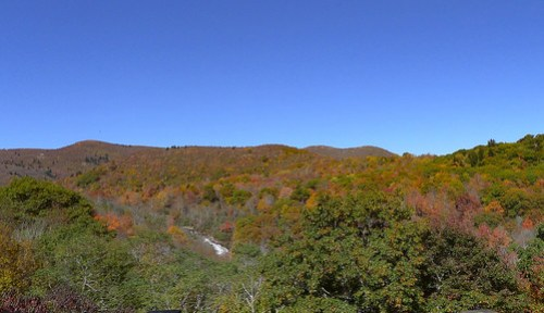 Blue Ridge Parkway in Autumn-44