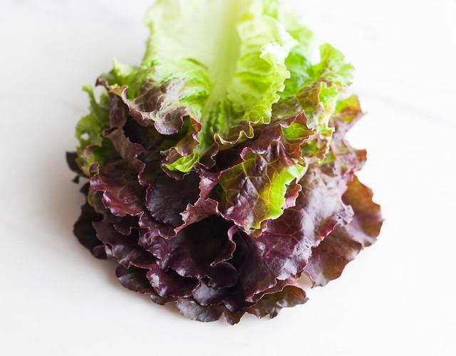 Perfect lettuce for lentil salad lettuce wraps (gluten-free/meatless recipe)