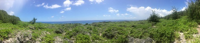 Picture from the Taguan Trail, Guam