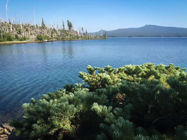 Lake Waldo
