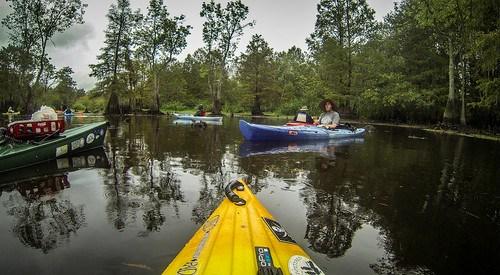 Sparkleberry Swamp with LCU-228