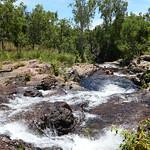04 Viajefilos en Australia, Litchfield NP 007