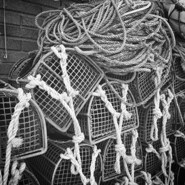 Nasas o útil de pesca para el bogavante