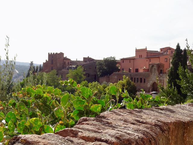 Tuscany Certaldo View - 1