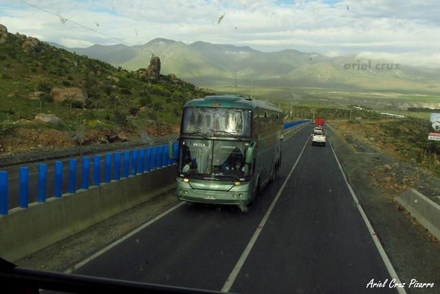 TACC Expreso Norte - Punta Teatinos - Comil Campione 4.05 HD / Volvo (DRTV78)