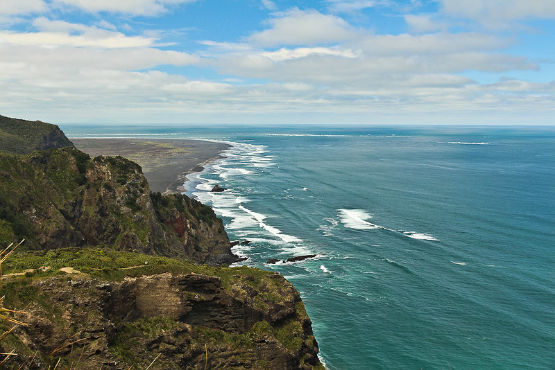 Mercer Bay Loop Track is a short walk with amazing coastal views only 1 hour from Auckland, New Zealand!