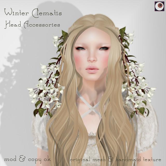 *NAMINOKE*Winter Clematis