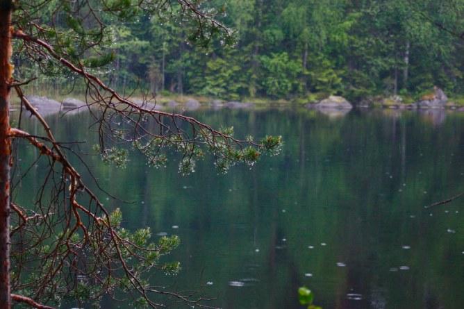 Suomen kansallispuistot