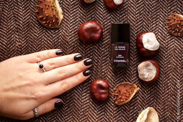 09 Chanel Le Vernis 669 Chataigne Ann Sokolovs swatches