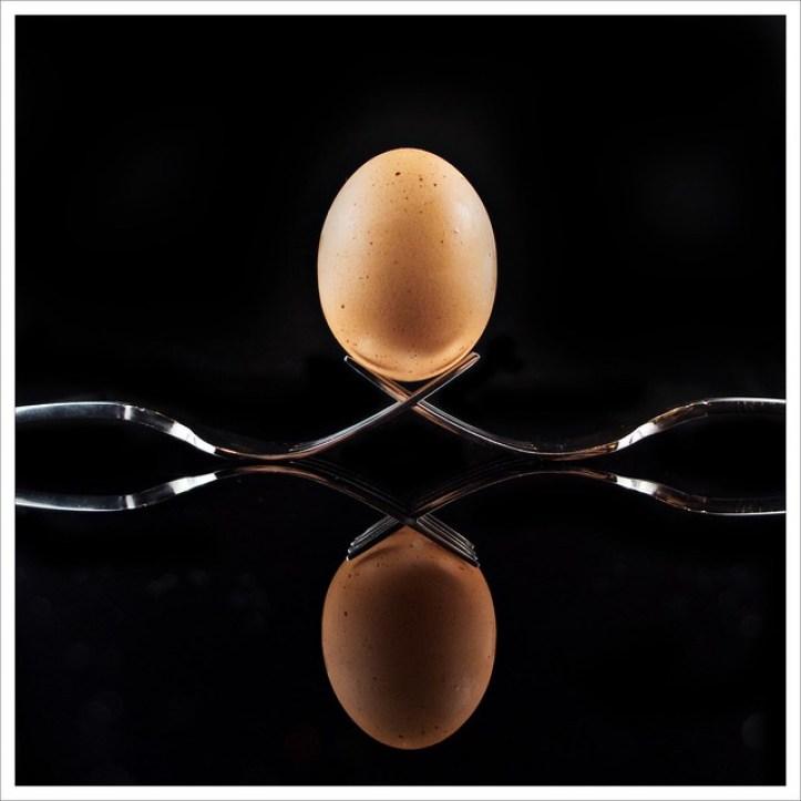Day 336 - A Good Egg