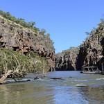03 Viajefilos en Australia, Katherine NP 014