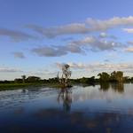 02 Viajefilos en Australia, Kakadu NP 100