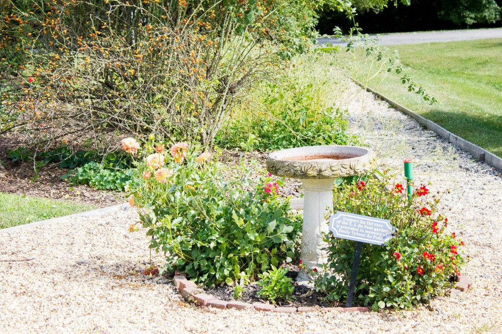 hagley-garden-food-tour-birdbath