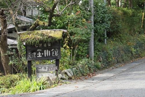 Tamagawakan Japanese-style hotel(Atsugi, Japan)