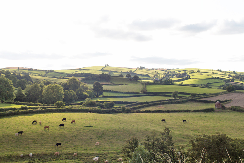 7 clun castle countryside view shropshire