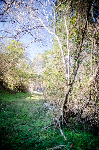 Pacolet River Trail-038