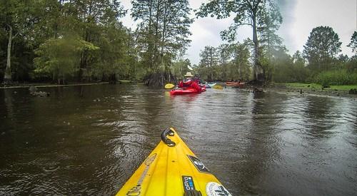 Sparkleberry Swamp with LCU-246